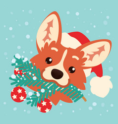 cute corgi dog in santa hat with christmas tree vector image