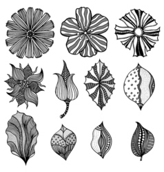 Monochrome abstract doodle flowers vector image