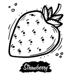 Strawberry isolated on white background vintage vector