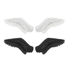 White and black wings angel and demon wings birds vector