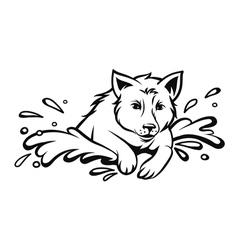 Dog jumping vector image