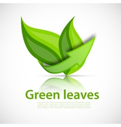 Green leaves with arrow vector image vector image