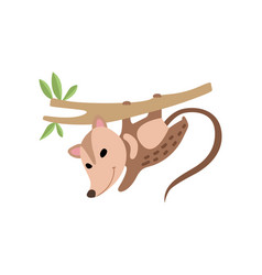 Cute opossum hanging on tree branch adorable wild vector