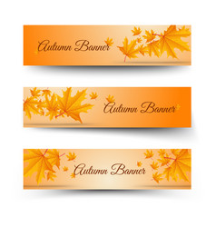 floral autumn horizontal banners vector image
