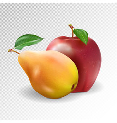 Ripe apple and pear on transparent background vector
