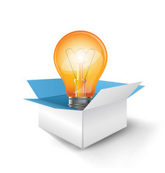 infographic design bulb box icon vector image