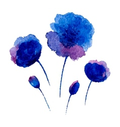 Watercolor poppies vector