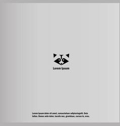 a raccoon vector image