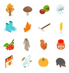 Autumn elements icons set isometric 3d style vector image