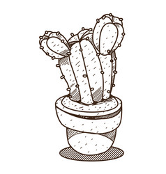 Cactus in a pot outline drawing for coloring vector