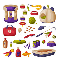 cat accessories set pet shop products food vector image