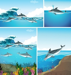 Dolphins swimming in the ocean vector image