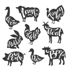 Farm Animals with Names Vector Images (61)