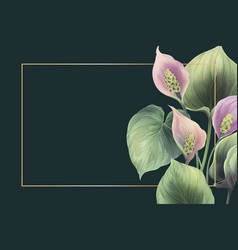 frame with calla flowers vector image