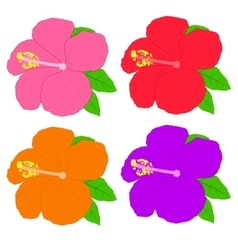 Hibiscus flower editable vector image