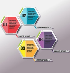 Modern Hexagon Info Graphic Template vector image