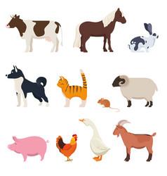 set farm animals on white background vector image