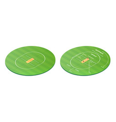 top view on cricket pitch or ball sport game field vector image