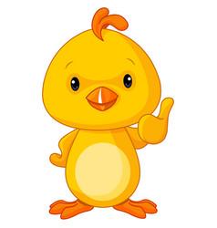 cute yellow baby chicken vector image vector image