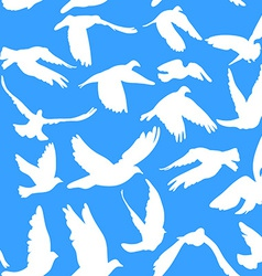 Doves and pigeons seamless pattern on blue vector image vector image