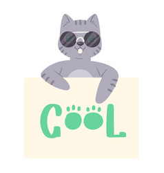 Cat in sunglass banner kitten character vector