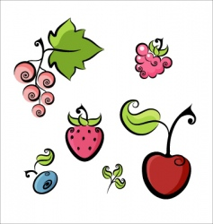 berries collection vector image vector image