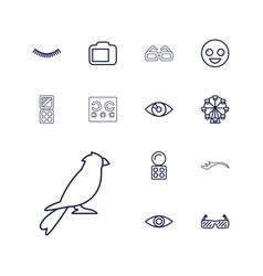 13 eye icons vector