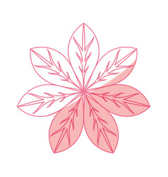 Beautiful flower isolated vector