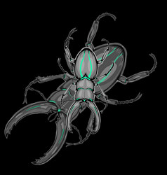 beetle with shadow vector image