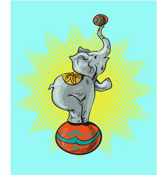 Circus elephant cartoon icon vector