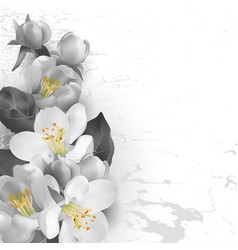 Floral background in graphic styl vector