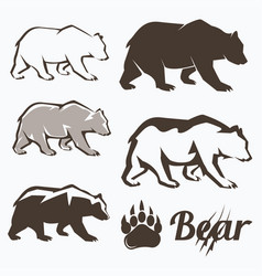 set of walking bear silhouettes in different vector image