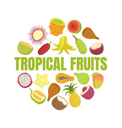 tropical fruits banner template with fresh ripe vector image