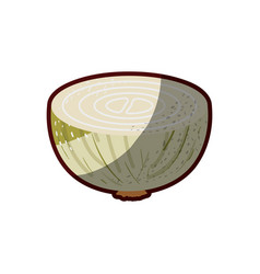 White background of middle onion with stains and vector