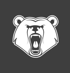 bear growl vector image vector image