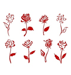 Beautiful red roses vector image