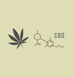 Cbd hemp oil in organic color vector