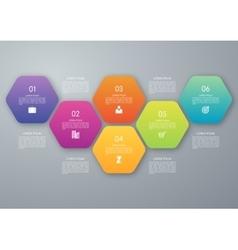 Circle hexagon infographic vector