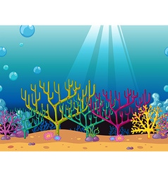 Coral reefs under the ocean vector