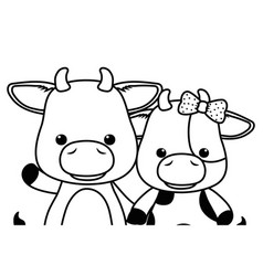 Couple bull and cow cartoon design vector