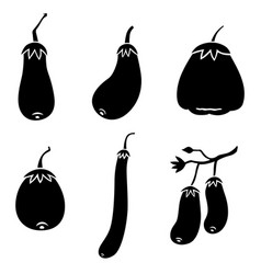 Eggplants icon set vector