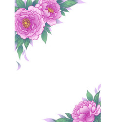 elegant background with peony flowers vector image