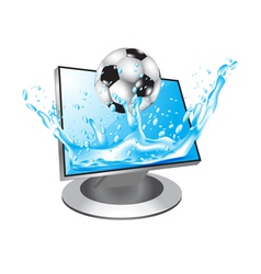 football in water vector image