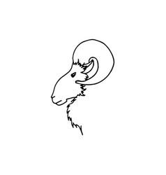 hand drawing ram head in profile black sketch vector image