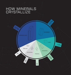 how minerals crystallize vector image