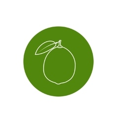 Icon Lime in the Contours vector