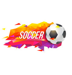 logo for soccer teams or tournaments vector image