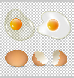 Raw and fried eggs set vector