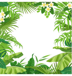 Summer background with tropical plants vector