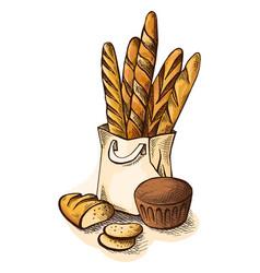 watercolor fresh bread in paper bag vector image